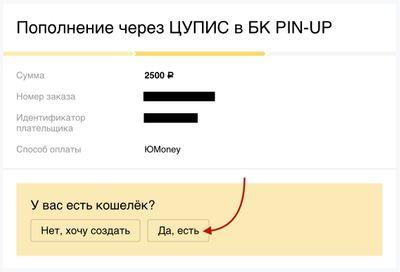 Скриншот пополнения на сайте ЮMoney
