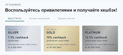 Скриншот программы VIP CASHBACK