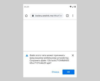 Скриншот проверки безопасности