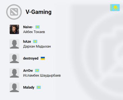 Состав команды V-Gaming