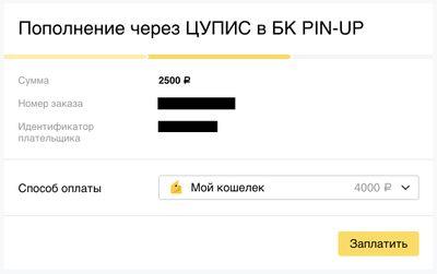 Скриншот подтверждения платежа в БК «Пин-ап»